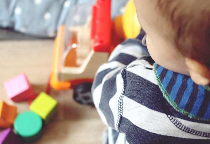 Eichhorn/Baby- & Kleinkindspielzeug:2-in-1 Spiel-Spaß mit Eichhorn