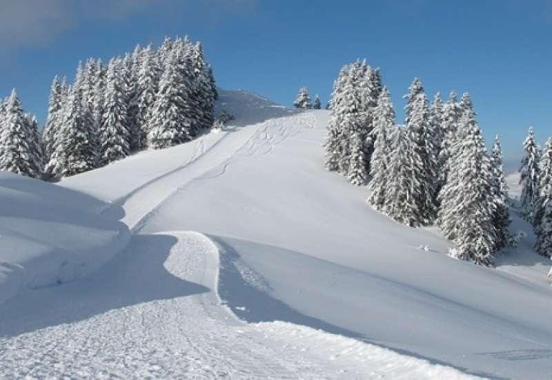 Endlich Schnee! Big Bobby Bob