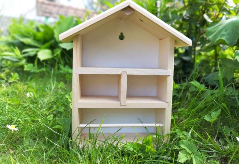Eichhorn/Basteln, Malen & Kreativ:Bienenhaus zum Selbstgestalten