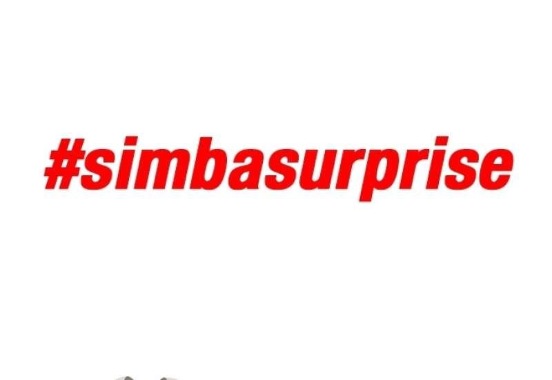 Simba Surprise