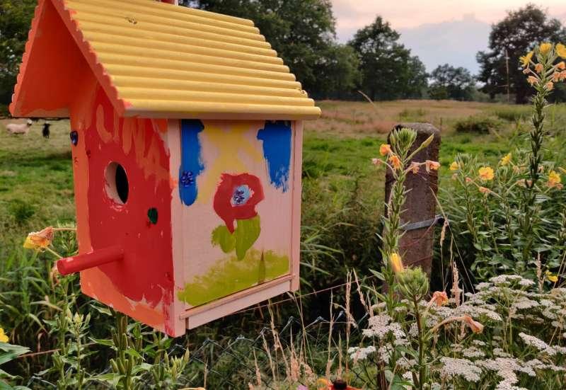 Eichhorn/Basteln, Malen & Kreativ:DIY: Vogelhaus
