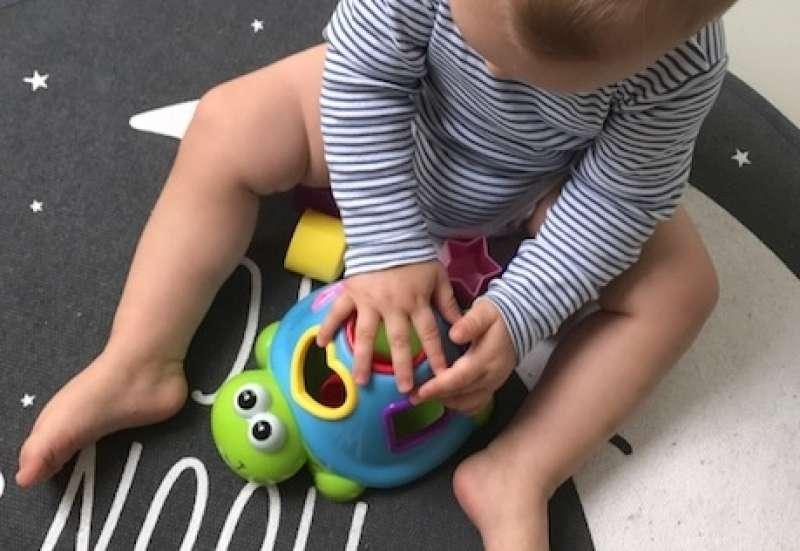 Simba/Baby- & Kleinkindspielzeug:ABC Sortierschildkröte