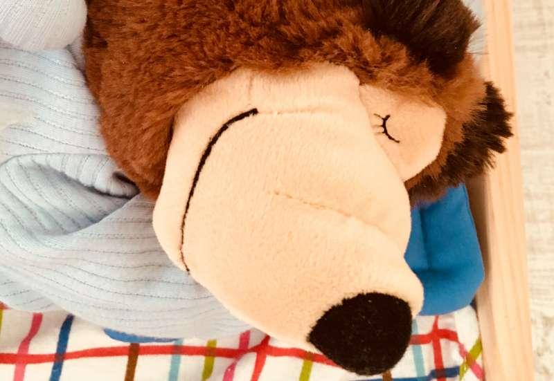 Simba/Plüsch- und Kuscheltiere:Schnarchbär Masha und der Bär